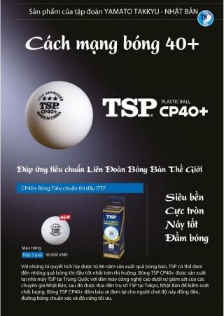 Bóng thi đấu TSP CP40+ hộp 3 quả