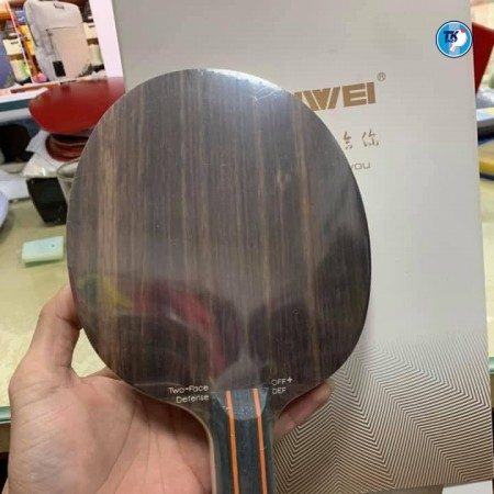 Cốt vợt 2 tốc độ #Sanwei Two Face cán ST